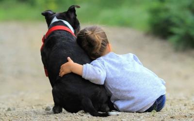 Pets Provide Mental Health Magic